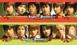 Super Junior 9